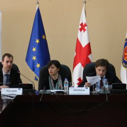 2nd Workshop of the Pilot Project 5 on Irregular migration, Tbilisi, June 2015
